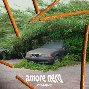 Amori Tossici - Diamine amore nero_b